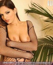 eve-angel-fishnet_015
